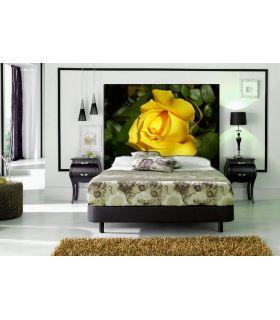 Acheter en ligne Têtes de lit rétroéclairés: modèle ROSE JAUNE.